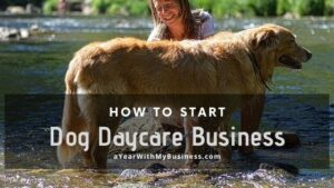 Read more about the article How to open a dog daycare