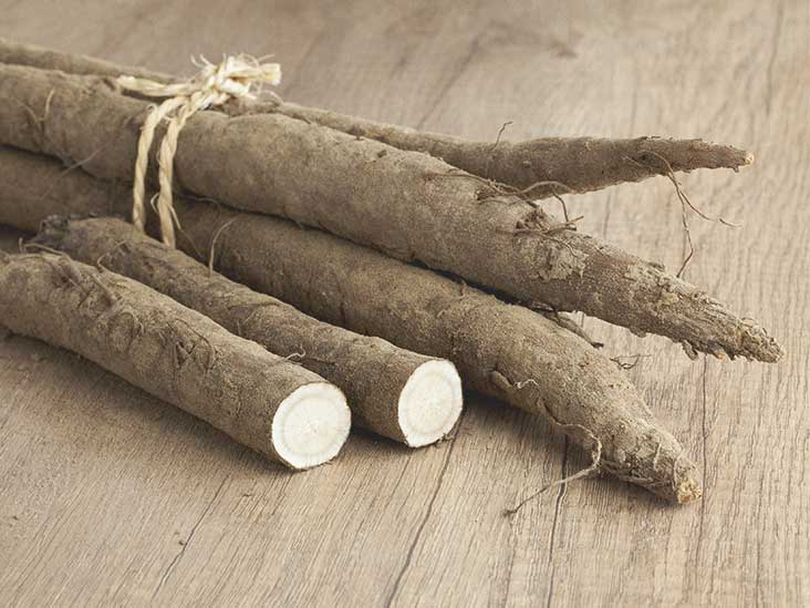 How to clean a dog's wound: Burdock root   todocat.com