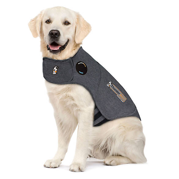 choose the right harness for your Pet: thundershirt | todocat.com
